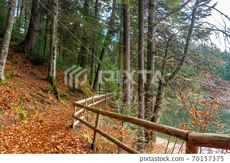 pathway through the forest. beautiful autumn scenery. wooden fence along the walkway covered in fallen foliage 70157375