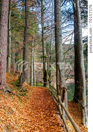 pathway through the forest. beautiful autumn scenery. wooden fence along the walkway covered in fallen foliage 70157376