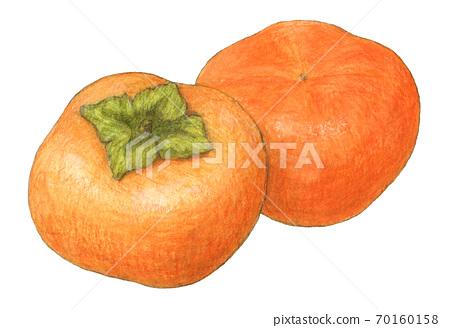 柿子手繪水彩彩色Empitsu繪畫 70160158