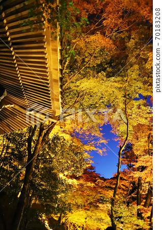 Korankei autumn leaves lit up and blue sky 70183208