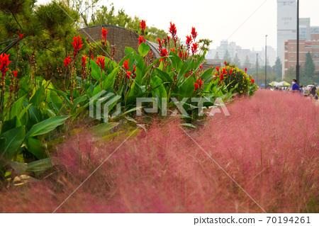 한국 경기도 인천시 계양구 서운동 계양꽃마루공원 70194261