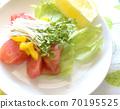 健康的蔬菜沙拉配西兰花芽和大量的硫磺扇 70195525