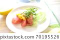 健康的蔬菜沙拉配西兰花芽和大量的硫磺扇 70195526