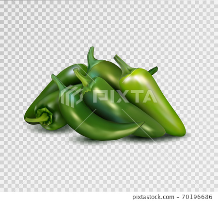 Hot green pepper on transparent background. Jalapeno groupe. Quality realistic vector, 3d illustration. 70196686