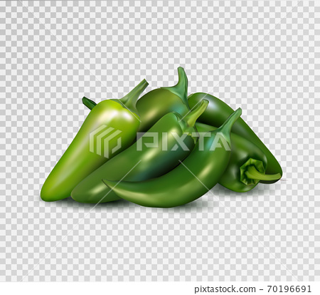 Hot green pepper on transparent background. Jalapeno groupe. Quality realistic vector, 3d illustration. 70196691