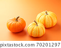 Halloween Pumpkin 70201297