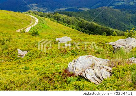rocks on the hillside. summer mountain landscape on carpathians on a cloudy day 70234411