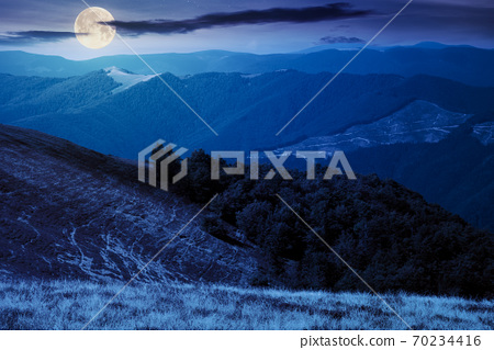 mountain landscape at night. trees on the meadow in dry grass in full moon light. ridge in the distance. beech forest on the hills. clouds on the sky 70234416