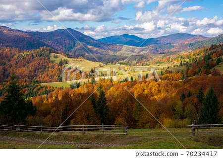 mountainous countryside landscape in autumn. beautiful scenery with forested rolling hills in fall colours. carpathian rural landscape. sunny day with clouds on the sky 70234417