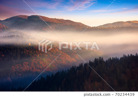 rolling hills in fog at sunrise. beautiful mountain landscape in autumn season. clouds on the morning sky. dramatic nature scenery 70234439