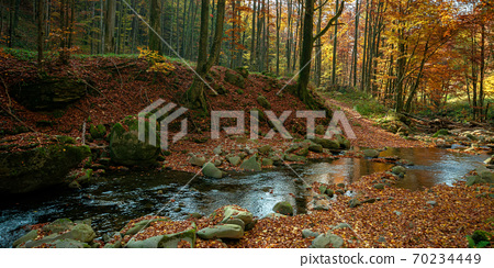 mountain river in autumn forest. rocks and fallen foliage on the shore. trees in yellow and red foliage. gorgeous nature autumnal scenery 70234449