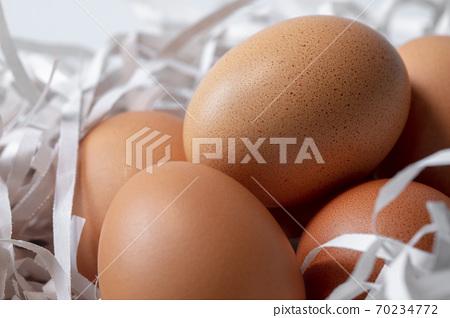 雞蛋,碎紙條,鳥巢,卵、細断紙、鳥の巣、Eggs, shredded paper,  70234772