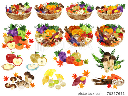 Watercolor autumn vegetables and fruits in a basket 70237651
