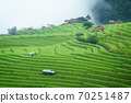 The terraced rice paddy in Bong Piang village Chiang mai Thailand 70251487