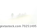 tropical forest with fog and mist 70251495