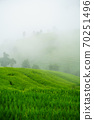 The terraced rice paddy in Bong Piang village Chiang mai Thailand 70251496