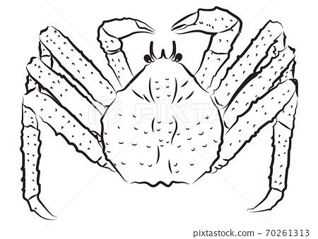 塔拉巴蟹的畫筆樣式插圖 70261313