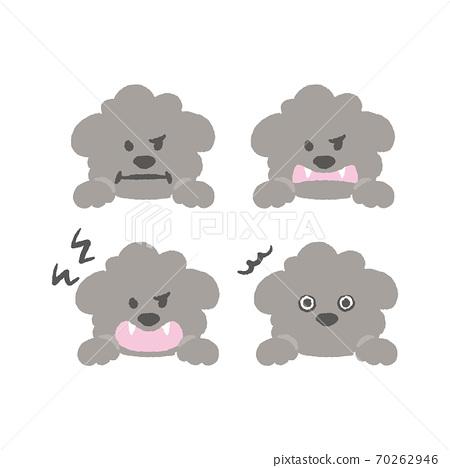 灰色的玩具貴賓犬的插圖 70262946