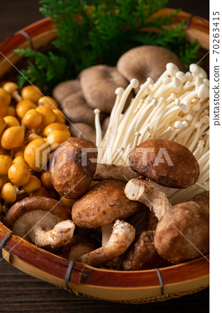Assorted mushrooms in a colander 70263415