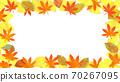 단풍, 낙엽, 은행 나무 잎의 프레임 70267095