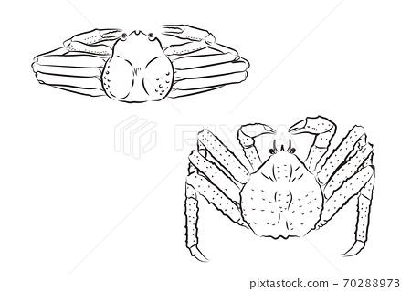 葵蟹和塔拉巴蟹的毛筆寫作風格插圖 70288973