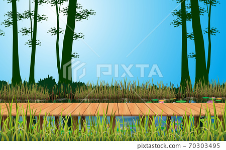 landscape of wooden bridge on the river in the forest 70303495