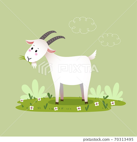 Vector illustration cartoon goat eating the grass. 70313495