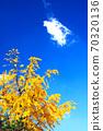 가을날 70320136