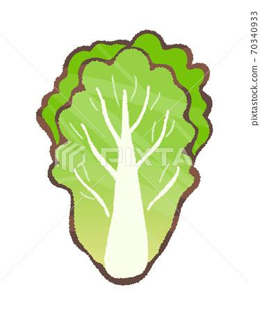 中國蔬菜圖 70340933