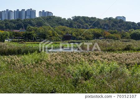화랑저수지,안산시,경기도 70352107