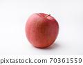 Apple 70361559