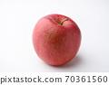 Apple 70361560