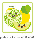 Information on harvesting with melon fruits 70362040
