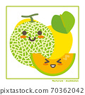 Information on harvesting with melon fruits 70362042