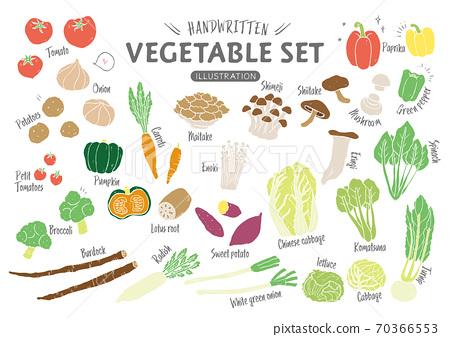 手繪蔬菜(無線條) 70366553