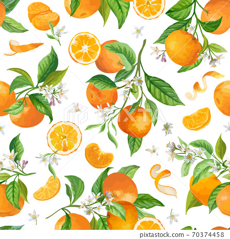 Mandarin Floral Pattern, Vector Seamless Fruit Background, Citrus Fruits, Flowers, Leaves, Limes Branches Texture 70374458