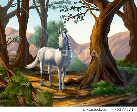 Unicorn in the forest 70377571