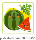 Information on harvesting with watermelon fruits 70380455