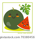 Nachuraruzu Kurotama Watermelon Fruit Harvest Information 70380456