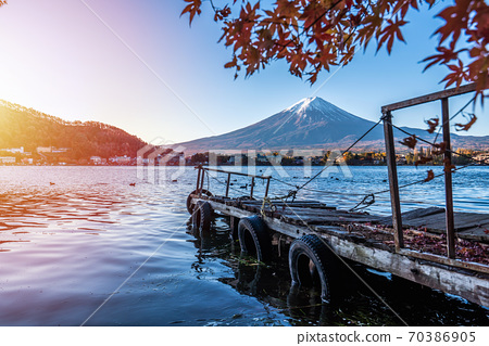 Colorful Autumn in Mount Fuji, Japan - Lake Kawaguchiko is one of the best places in Japan to enjoy Mount Fuji scenery of maple leaves changing color giving image of those leaves framing Mount Fuji. 70386905