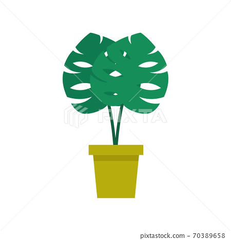 monstera plant flat icon, vector color 70389658