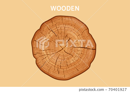 Top view of wood cross section 70401927
