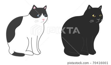 黑白貓和黑貓坐 70416001