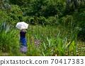 모네의 정원 70417383