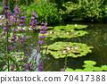 모네의 정원 70417388