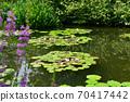 모네의 정원 70417442