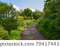 모네의 정원 70417443