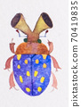 Fancy bug 70419835