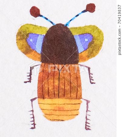 花哨的小虫 70419837