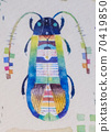 Fancy bug 70419850